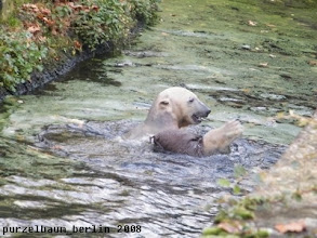 Photo: Spass mit dem Jutesack im Wasser :-)