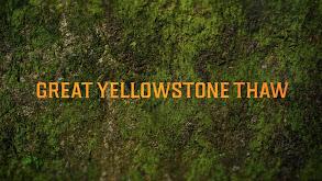Great Yellowstone Thaw thumbnail
