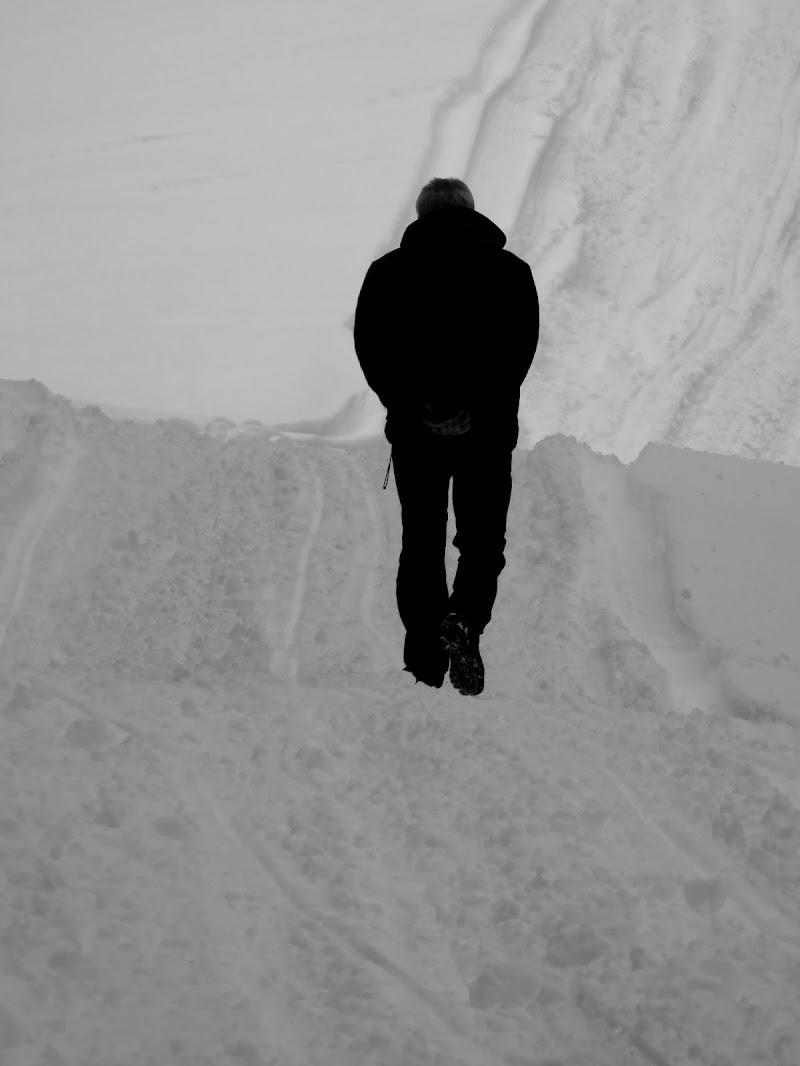 l'uomo solo nella neve di mariellaturlon