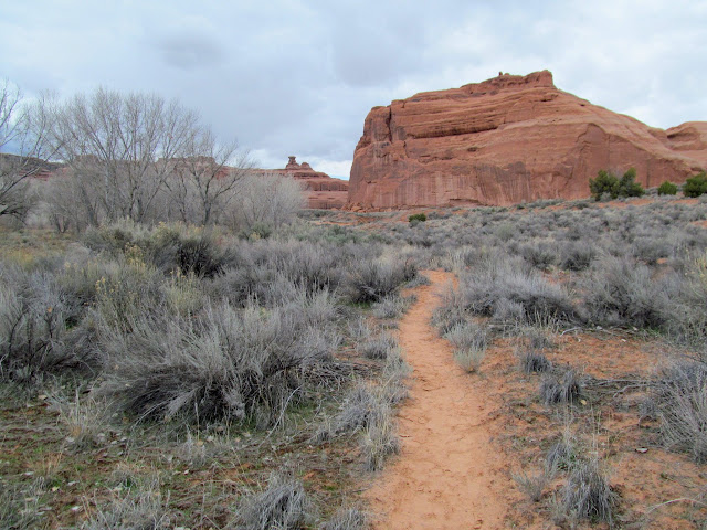 Hiking up Courthouse Wash