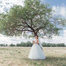 Wedding photographer Anna Dolgova (dolgova). Photo of 13.10.2016