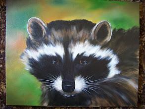 Photo: Raccoon. 16 x 20 oil on canvas. $299.00