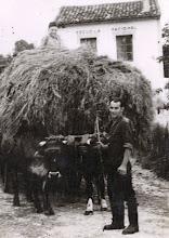 Photo: Luchi y Milio 1960