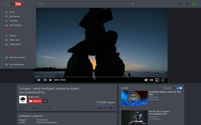 YouTube™ Dark