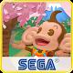 Super Monkey Ball: Sakura Edition Classic (game)