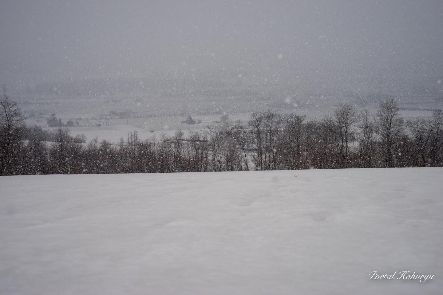 ぼた雪舞う風景