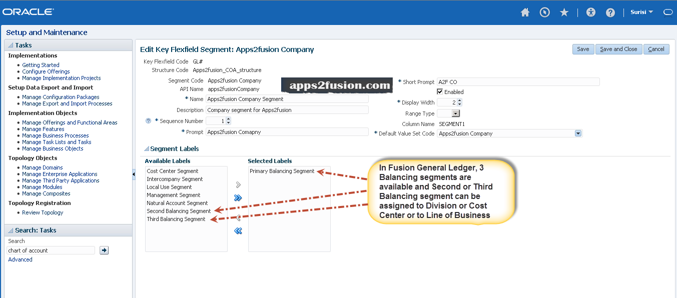 Use of Multiple Balancing Segments in Fusion General Ledger
