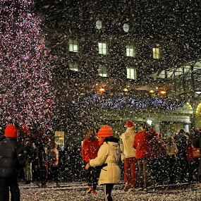 Let it Snow by Tony Murtagh - City,  Street & Park  Night ( london, city at night, street at night, park at night, nightlife, night life, nighttime in the city )
