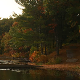 Canoe Dock and steps into the Woods by Kristine Nicholas - Novices Only Landscapes ( water, reflection, boats, forest, lake, leaves, boat, woods, dusk, country, boating, nature, tree, autumn, sunset, fall, trees, night, pond,  )