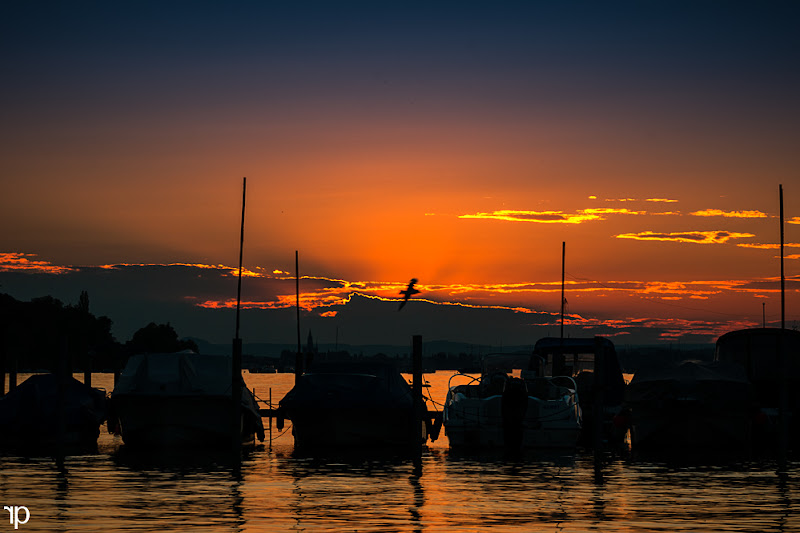Photo: Kleine Ferien  Um 20 Uhr haben wir uns entschieden das wir noch schnell an den Bodensee fahren den Sonnenuntergang fotografieren. Nach getaner Arbeit haben wir uns in einem Gartenrestaurant direkt am See mit diesem Bild noch Fish und Chips gegönnt und den Abend genossen. :)))  #project365 +G+ 365 Project Day188/366