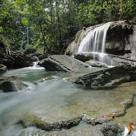 by Arkan Faeyza - Nature Up Close Natural Waterdrops