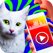 Cat translator - prank app