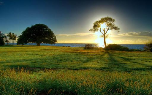 Landscape Wallpaper screenshot 4