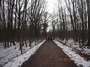 Photo: Enfin un sentier sans boue !