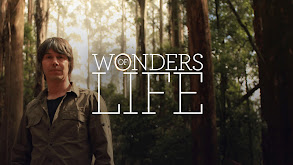 Wonders of Life thumbnail