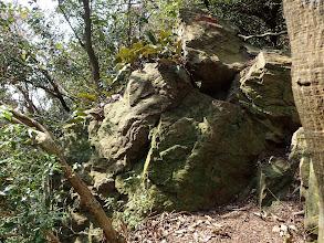 ヒトツバの生える岩場を登る