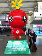 Photo: Travel Duck, Nico, and Pomegranate Head