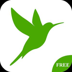 Libre Kiwi Chatous Inicial Tip Gratis