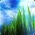 3D GRASS Live Wallpaper file APK Free for PC, smart TV Download