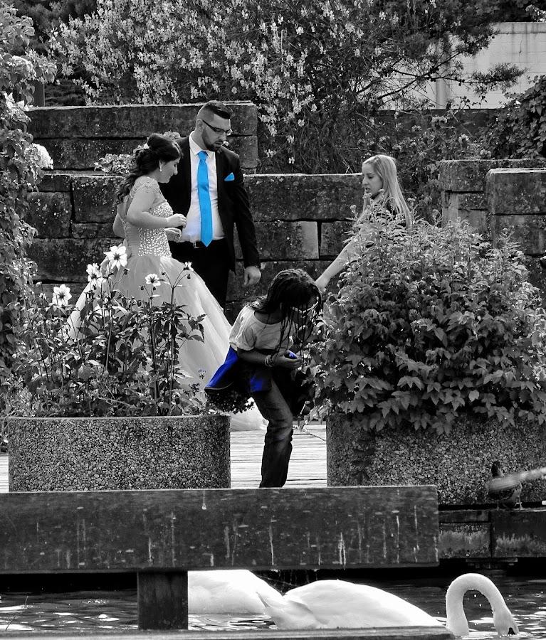 Blau by Radisa Miljkovic - Wedding Details
