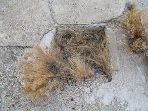 Photo: Drain hole in the concrete foundation