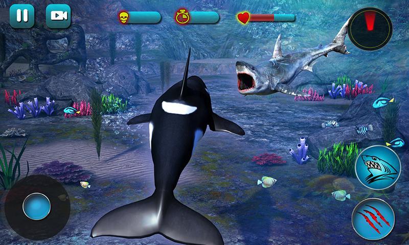 casino online online orca