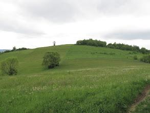 Photo: 19.Wsołowa (624 m).