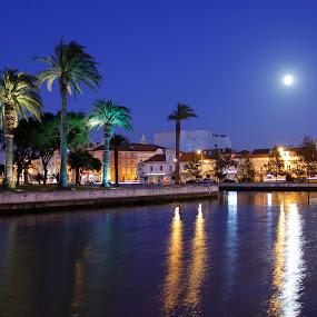 Nightfall by Fernando Cordeiro - City,  Street & Park  Vistas ( moon, park, street, night, city )
