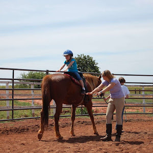 How I Started Working Internationally with Horses | Krys Kolumbus Travel Blogs