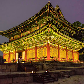 Palace at night by Varok Saurfang - Buildings & Architecture Public & Historical ( roof, colourful, night, architecture, palace, design )