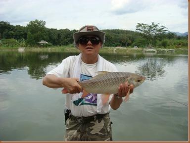 fish07a