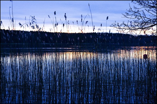 Hasselby3_20080217_0987