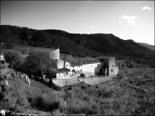 Mallorca08-sv%20028%5B4%5D.jpg