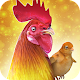 Rooster Chicks - Chicken Farm