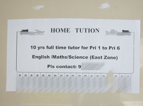 home tuition brochure pamphlets samples for tuitions