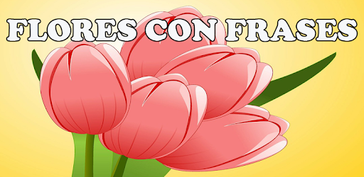 Flores Con Frases Apps On Google Play