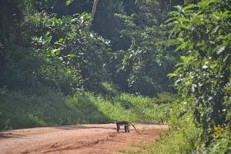 Photo: road back to Kampala