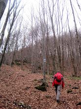 Photo: Anstieg zum Brennersteig