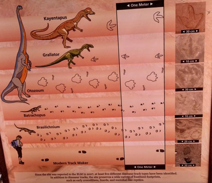 UT – Moccasin Mountain       geocaching for dino prints | Jan's