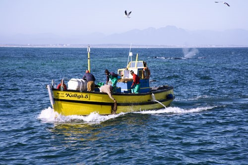 Fishermen in Port Nolloth in the Northern Cape.