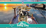 Biloxi Salty Dog
