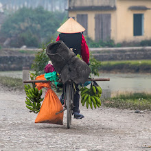 Photo: Yen Duc, Vietnam