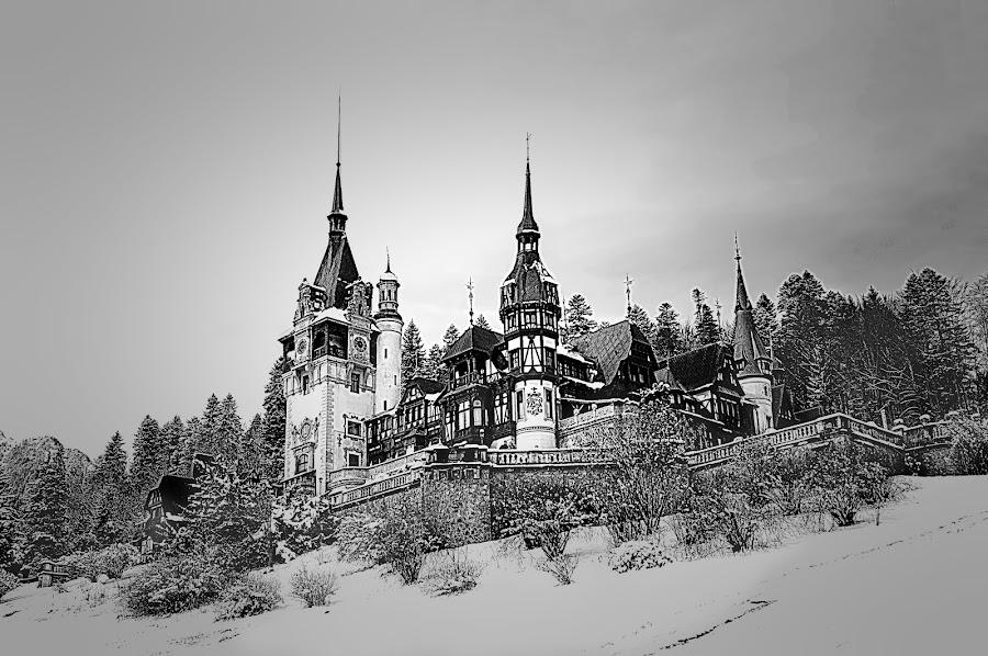 by Nedelcu Valeriu - Black & White Buildings & Architecture