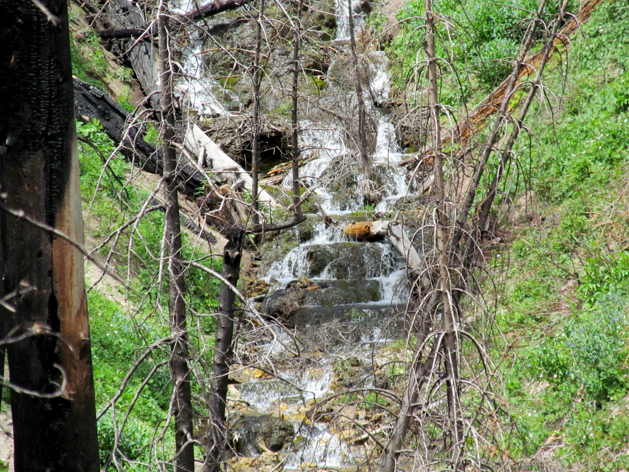 Photo: Falls above the sawmill