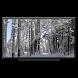 Winter on Chromecast ❄Live snow season scene on TV - Androidアプリ