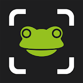 Ticketfrog Entry