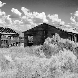 HOMESTEAD ON  THE PRAIRIE by Gerry Slabaugh - Black & White Buildings & Architecture ( homestead on  the prairie, bw, sage brush, prairie, homestead )