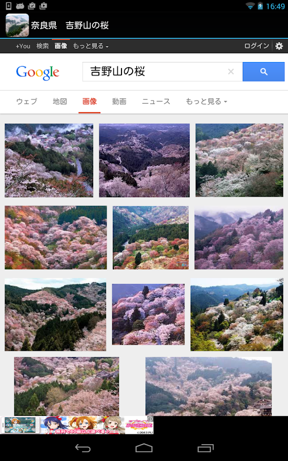 Japan:MountYoshino Sakura- screenshot