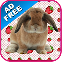 Bunny Games & Sounds icon