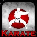 Karate Videos - Offline Icon